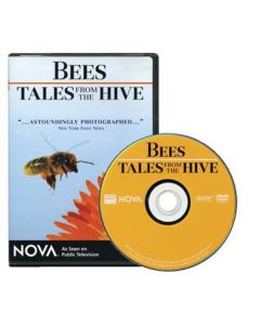 Bees - Tales from the Hive DVD