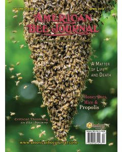 American Bee Journal Back Issue 1 - 5 Years