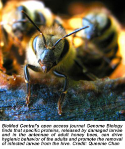 extra-9-27-2012-biomed