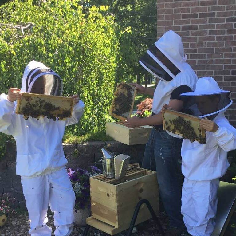 Checking Hives for Winter Feeding
